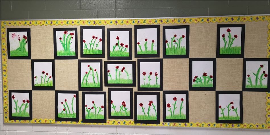 November Bulletin Boards